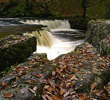 Horseshoe Falls - Brecon Beacons by Trevor King