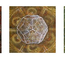 The Platonic Solids by Donna Raymond