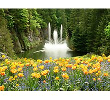 Butchart Gardens Fountain in Spring Photographic Print