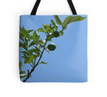 Premature lemon tree Tote Bag