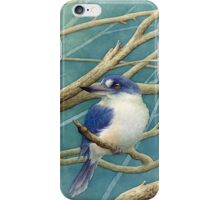 Forest kingfisher iPhone Case/Skin