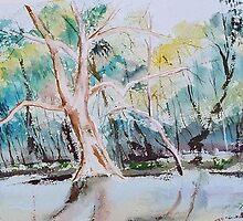 Wetlands, Victoria, Australia by Margaret Morgan (Watkins)