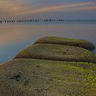 Calm Waters! by Krishna Gopalakrishna