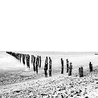 Dilapidated Pier by Krishna Gopalakrishna