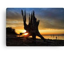 Sundown On The Beach Canvas Print