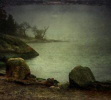 Foggy by Carina514