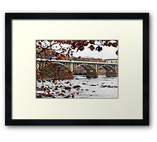 Columbia on the Congaree Framed Print