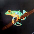Tree Frog by Levi Moodie