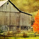 The Barn and the Tree by vigor