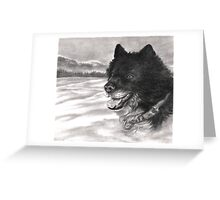 Snow Dog Greeting Card