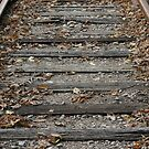Between The Rails by Dean Mucha