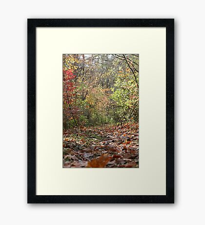 From Down Low Framed Print