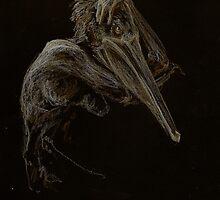 Pelican by Meredith Nolan