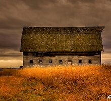 Barn on the Hill by Michelle Burton