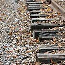 Side Rail by Dean Mucha