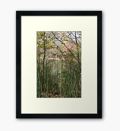 The Greens Framed Print