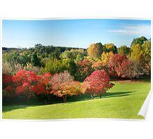Adelaide Mount Lofty Botanic Garden in Autumn Poster