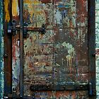 The Brother's Door by ScaredylionFoto