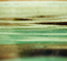 Drip Drip Drop-1 by ScaredylionFoto