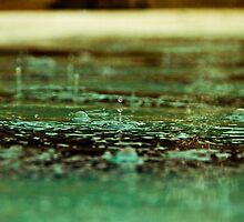 Drip Drip Drop-3 by ScaredylionFoto