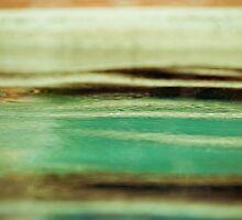 Drip Drip Drop-4 by ScaredylionFoto
