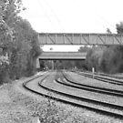 Bridge Lines by crazyman53
