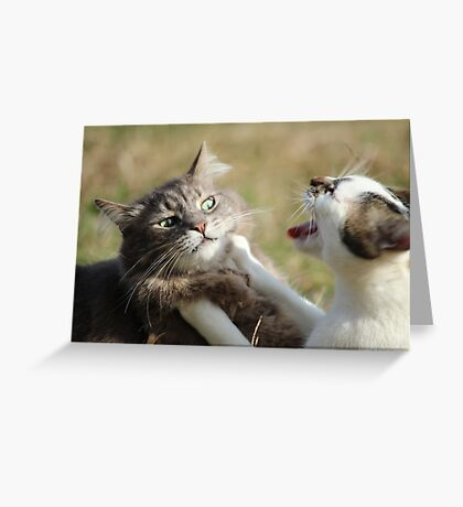 Funny not Funny Greeting Card