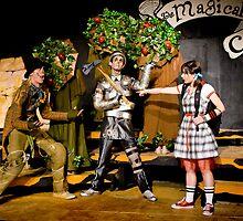 Wizard of Oz-12 by ScaredylionFoto