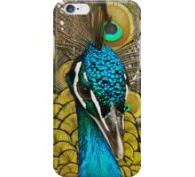 Peacock Pretty Proud iPhone Case/Skin