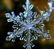 Snowflake Crystal Silver by Mowny