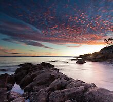 Fantastic Freycinet by Martin Canning