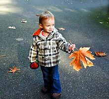 The fallen leaf by Anne  McGinn