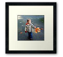 The fallen leaf Framed Print