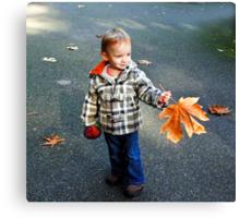 The fallen leaf Canvas Print