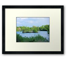 On a Small Island in a Small Pond in a Big World  Framed Print