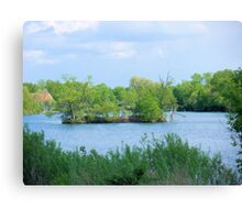 On a Small Island in a Small Pond in a Big World  Canvas Print