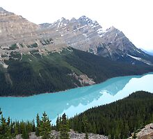 Peyto Lake, Alberta by Kris  Kennedy