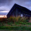 Lonley Old Barn by Dale Lockwood