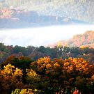 Autumn Color in Mountain Mist by Kate Eller