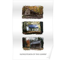 Homesteads of the GSMNP Poster