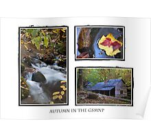 Autumn in the GSMNP Poster
