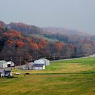 The Last Touches of Autumn in Missouri by barnsis