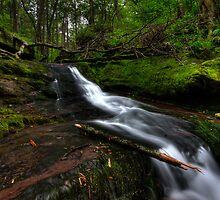 Garden State Falls by SpeezPhotos