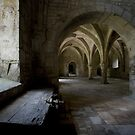 Fontenay Abbey by lawrencew