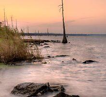 Sunset on Lake Pontchartrain by RayDevlin