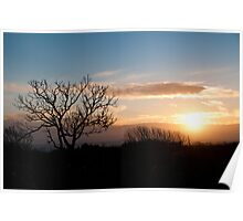 Sunrise at Dunsborough Poster
