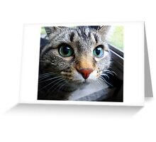 Emerald Eyes Greeting Card