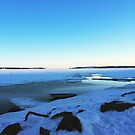 Prince Edward Island Winter Snow Landscape Photograph by Nadine Staaf