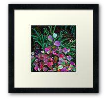 nature's color chart Framed Print