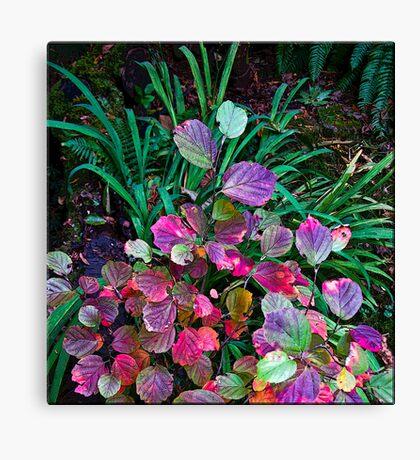 nature's color chart Canvas Print
